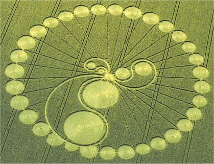 http://davidpratt.info/crop/crop0307a.jpg